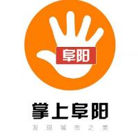 阜阳市掌上网络科技有限公司